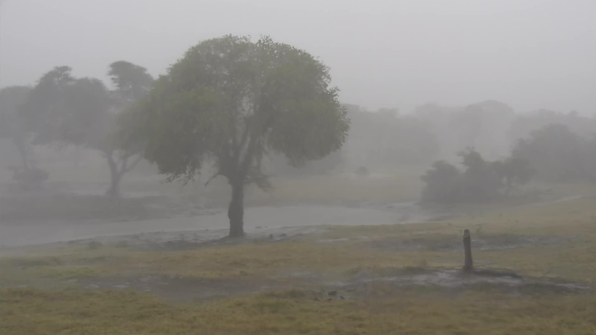 VIDEO: Heavy Thunderstorm