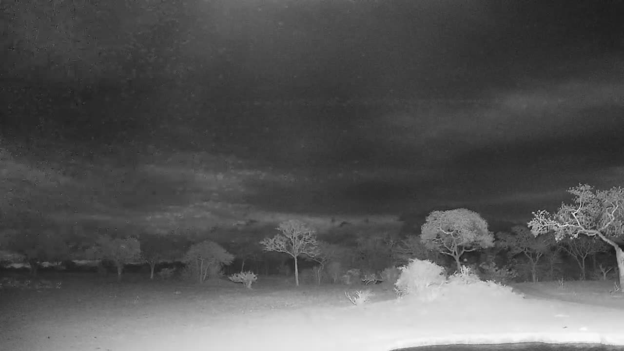 VIDEO: Heavy thunderstorm incoming Nkorho