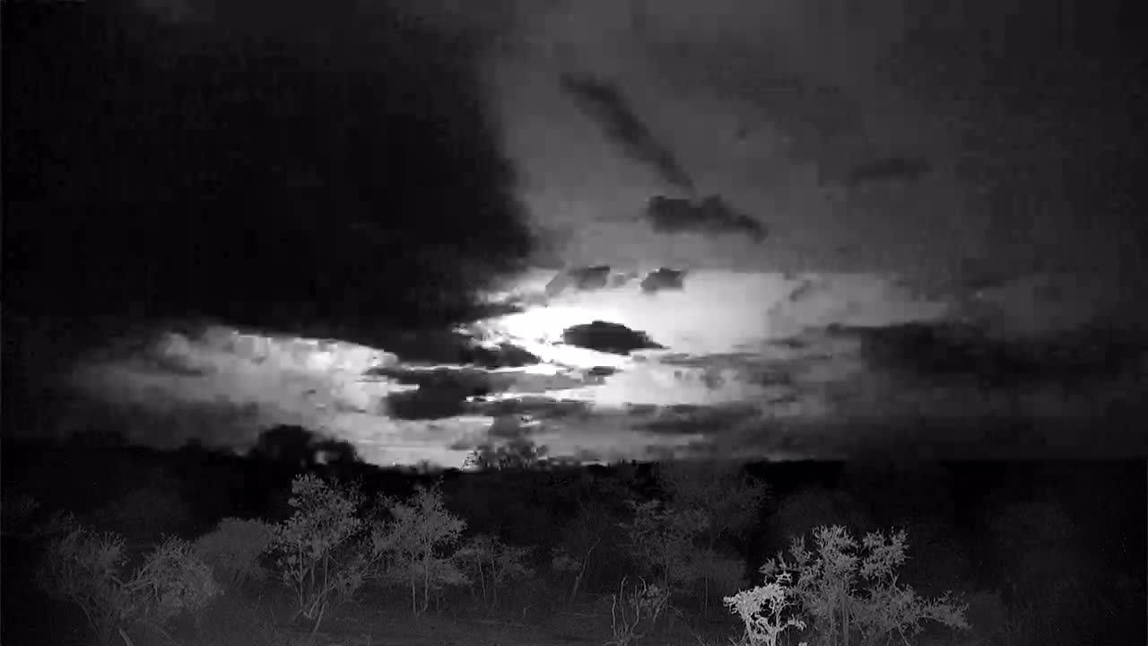 VIDEO: The beauty of a Lightning show